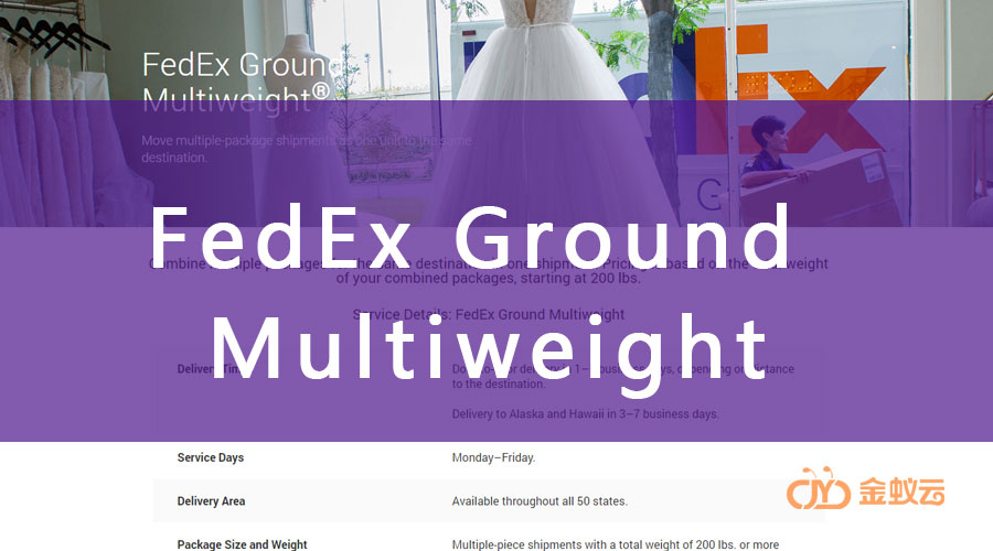 FedEx Multiweight 是什么?